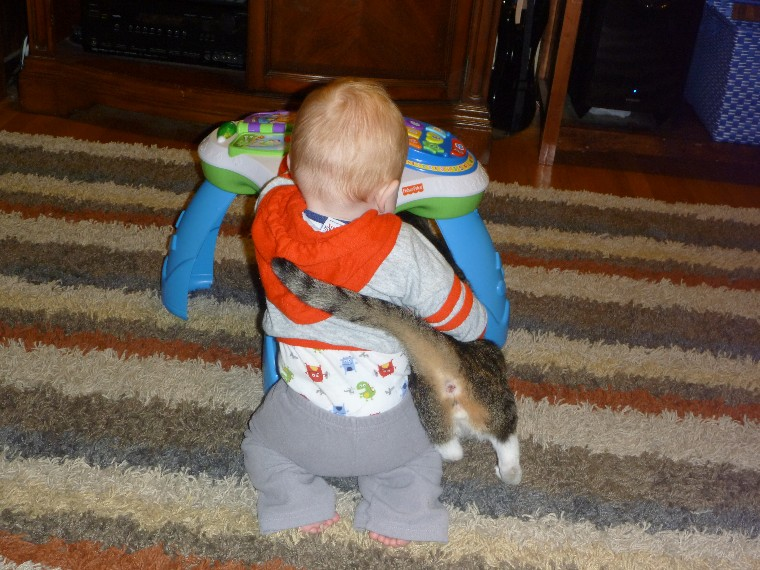 I think the cat is actually TRYING to help him stand up.