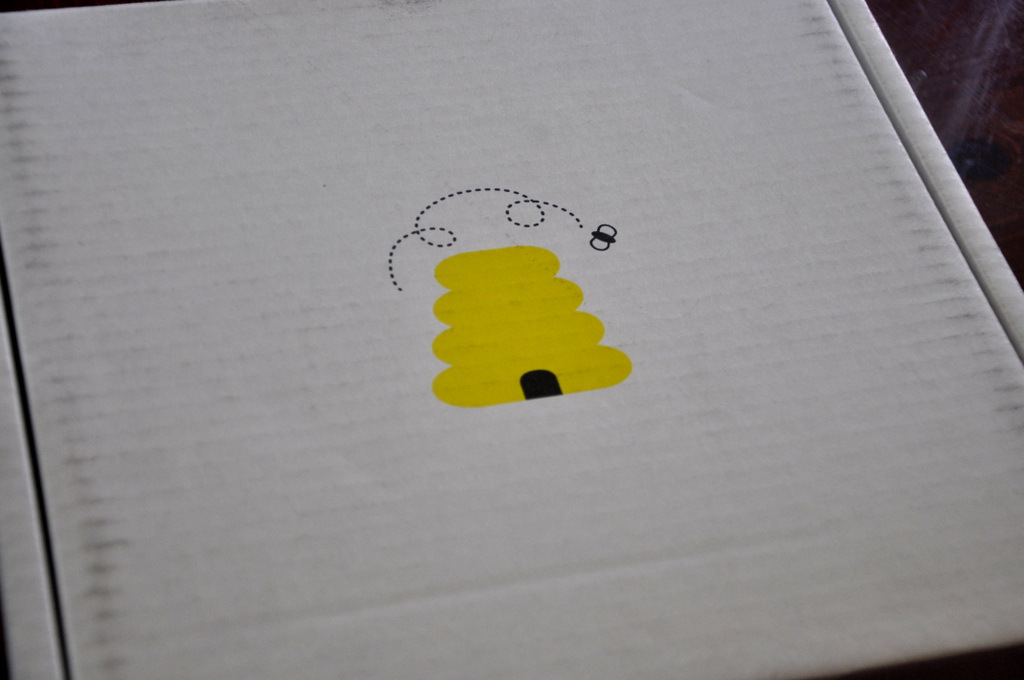 wittlebee box review