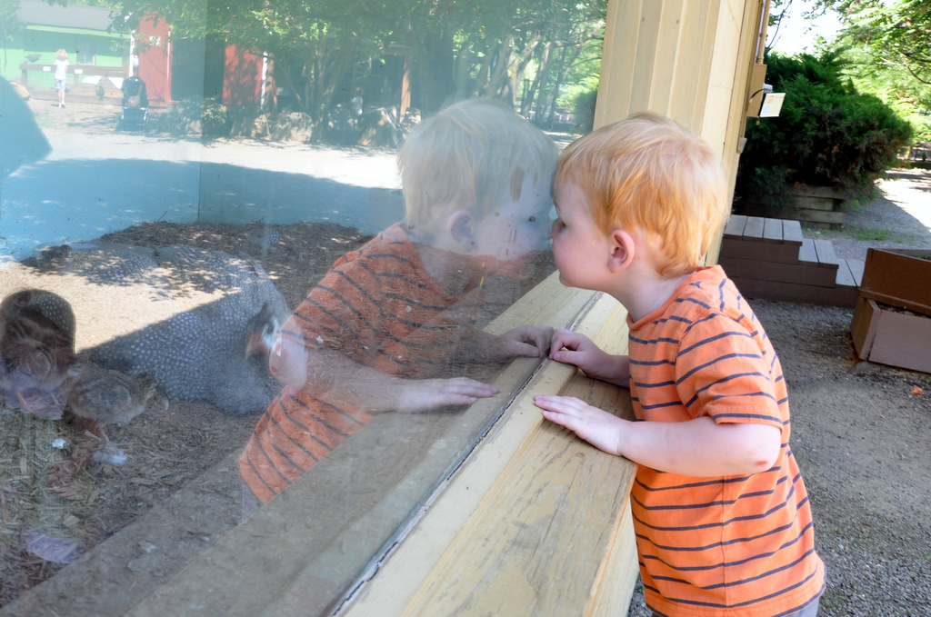 reston zoo