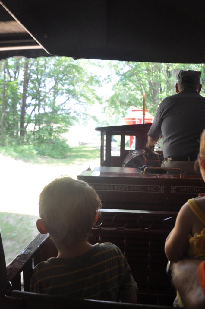 burke lake park train