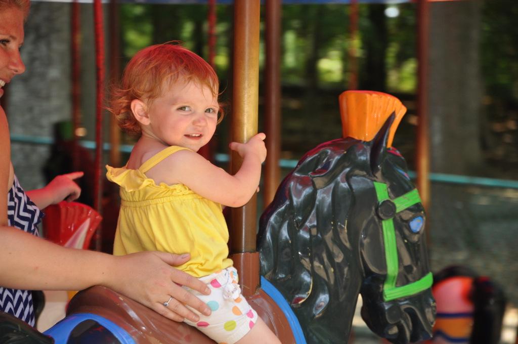 burke lake park carousel