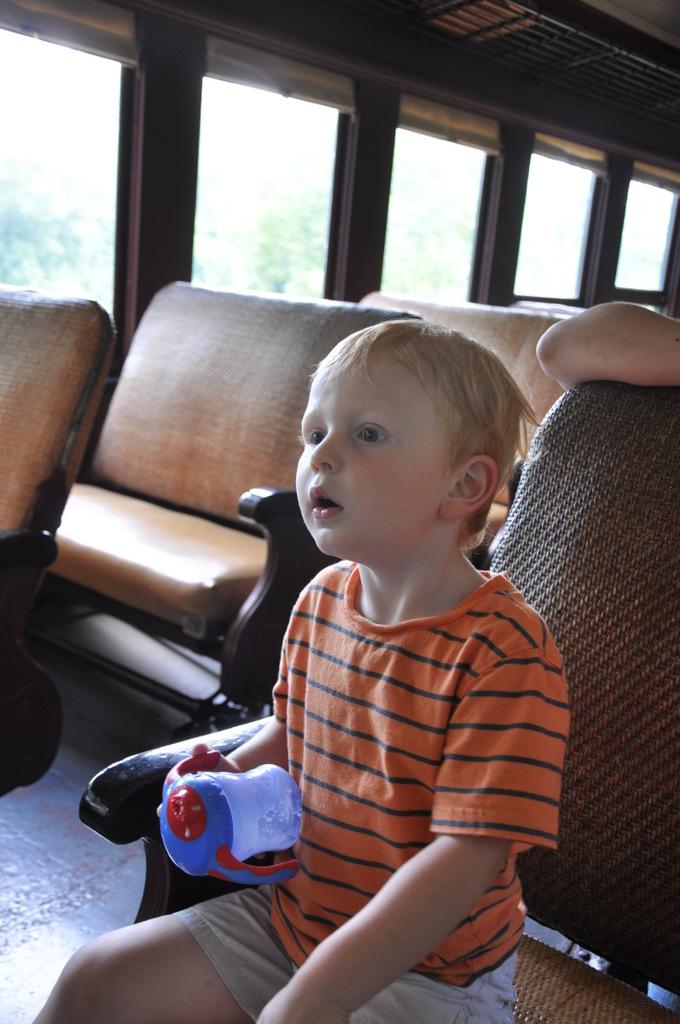 WK&S Hawk Moutain Line Kempton train ride