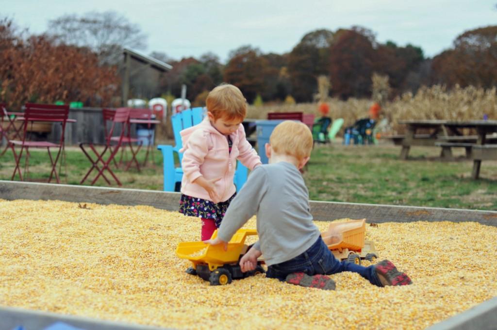 clark farms 2012