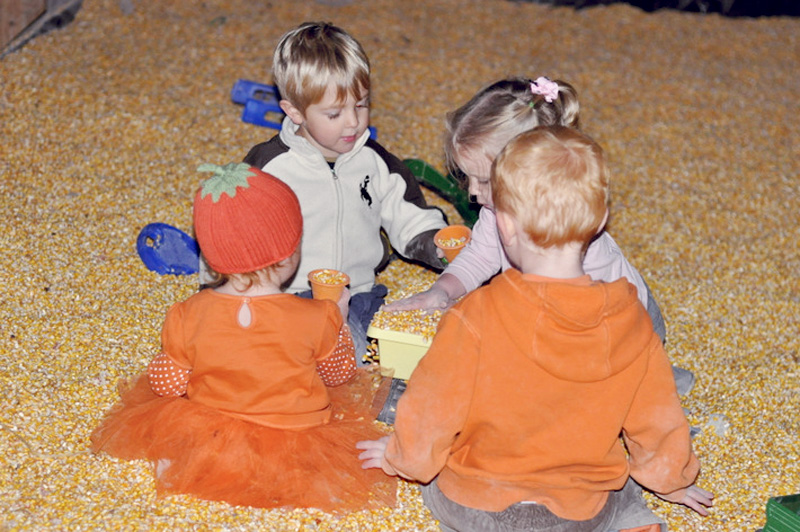 buttonwood farms corn maze 2012