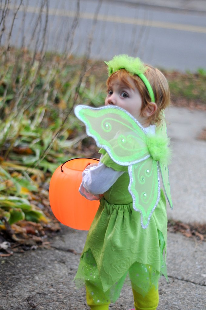 tinker bell costume