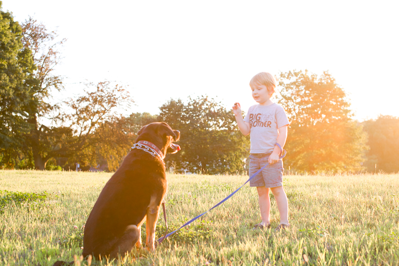 golden hour dog kids-10