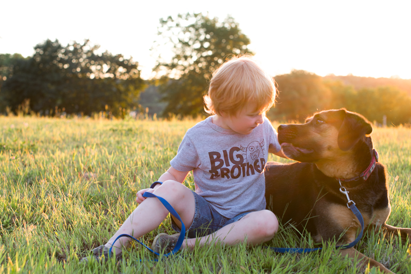 golden hour dog kids-24