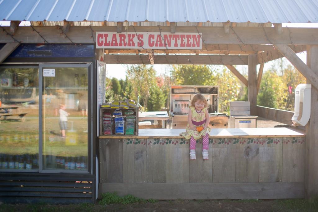 clark farms 2013-34