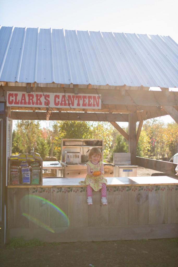 clark farms 2013-37