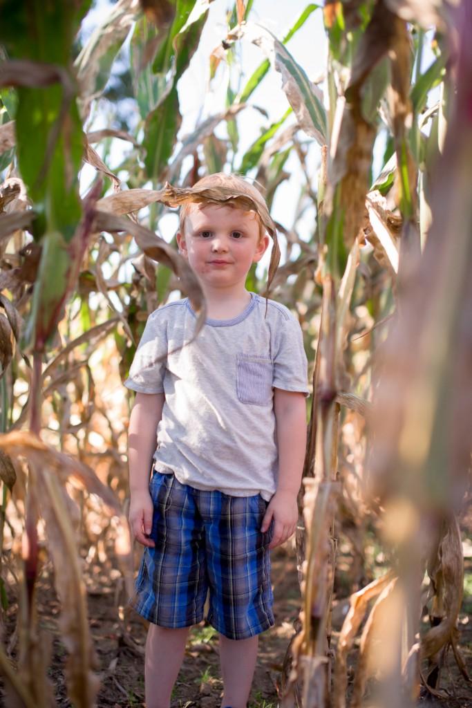 clark farms 2013-50