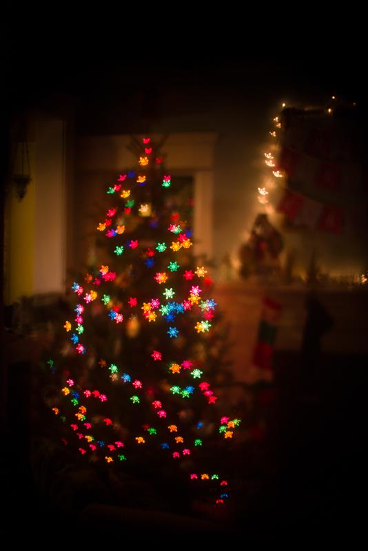 christmas 2013-12