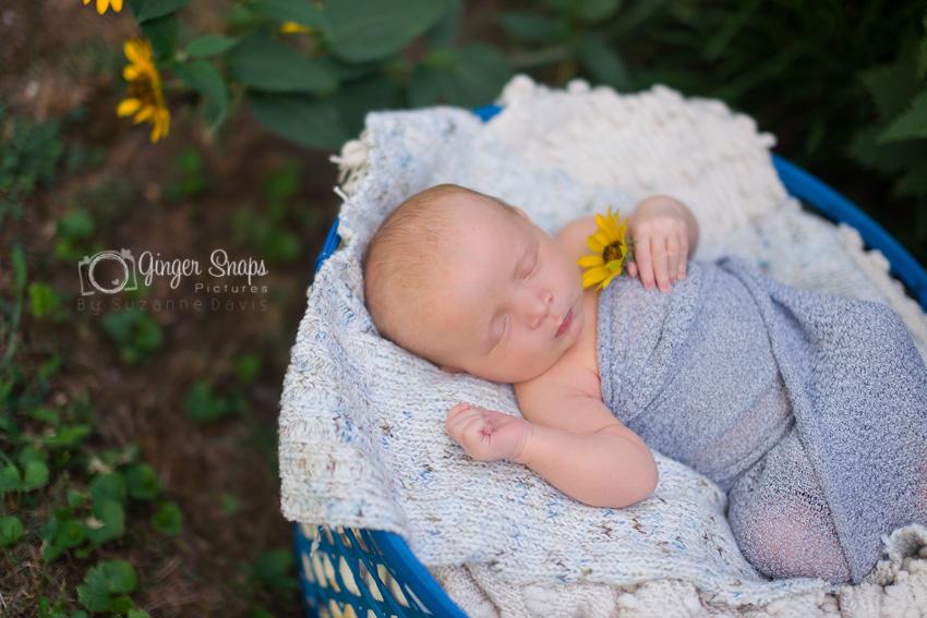 newborn garden-20 web