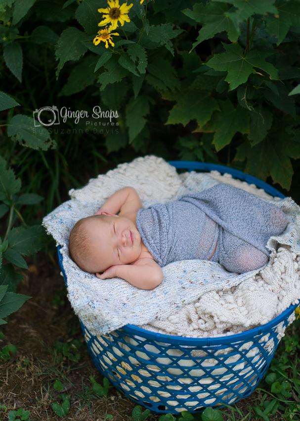 newborn garden-25 web
