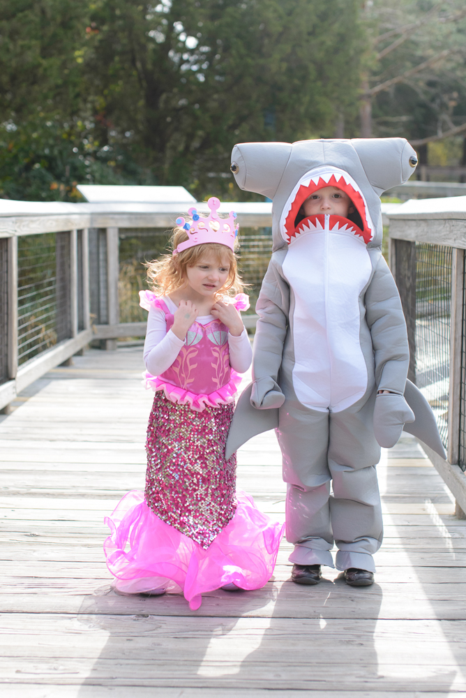 halloween at mystic aquarium-4