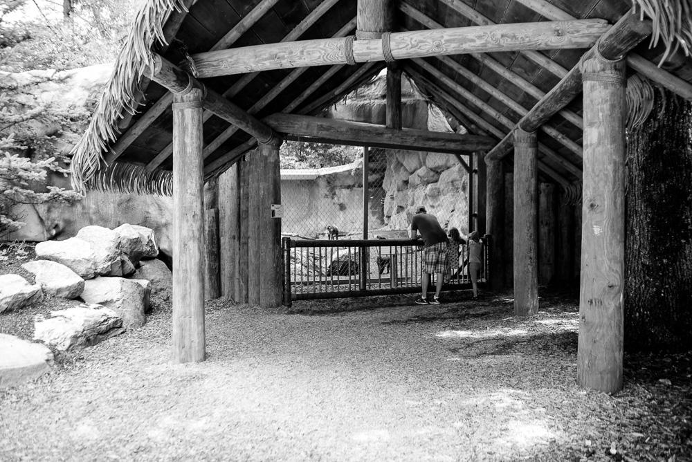 southwick zoo resize-15