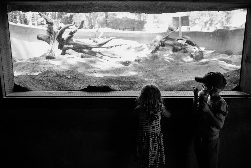 southwick zoo resize-76