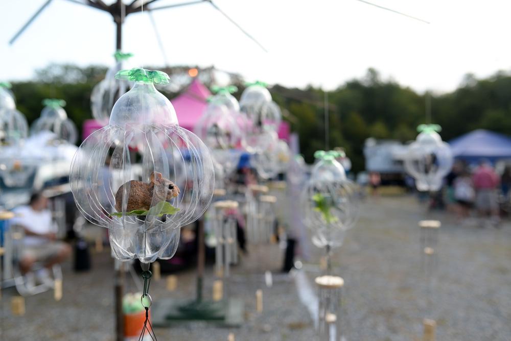 vintage market norwich car show mystic garlic festival-12
