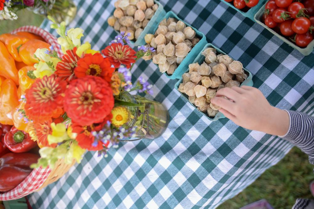 vintage market norwich car show mystic garlic festival