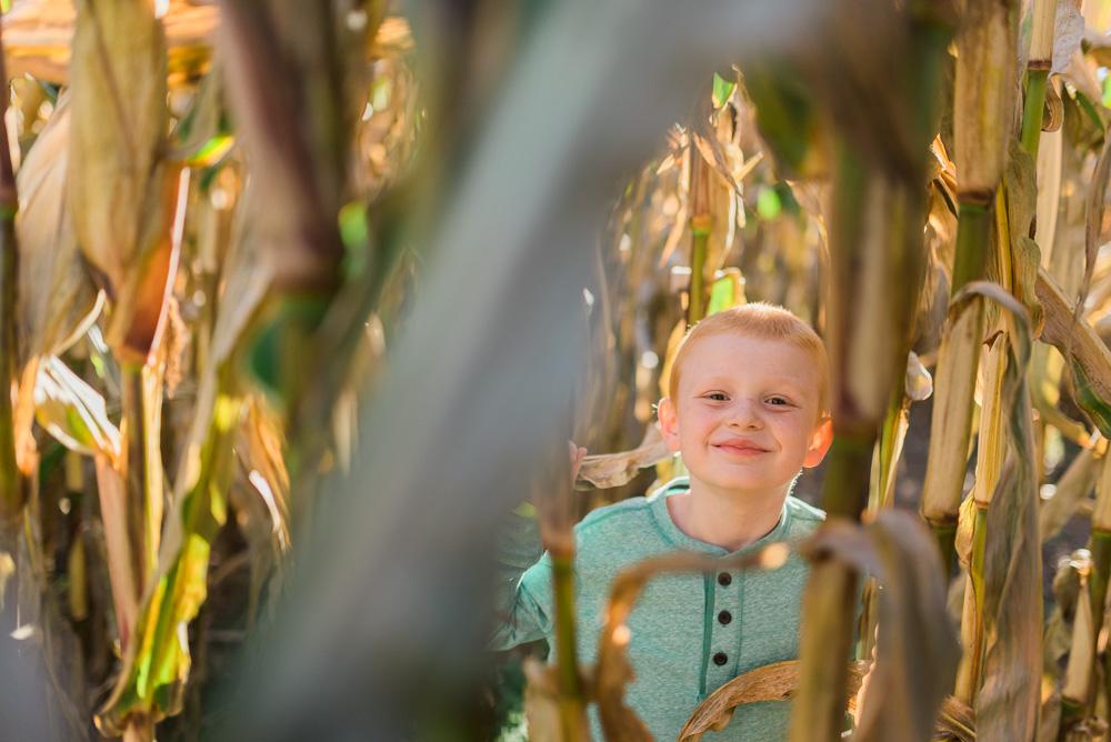 buttonwoods farm corn maze 2015-44