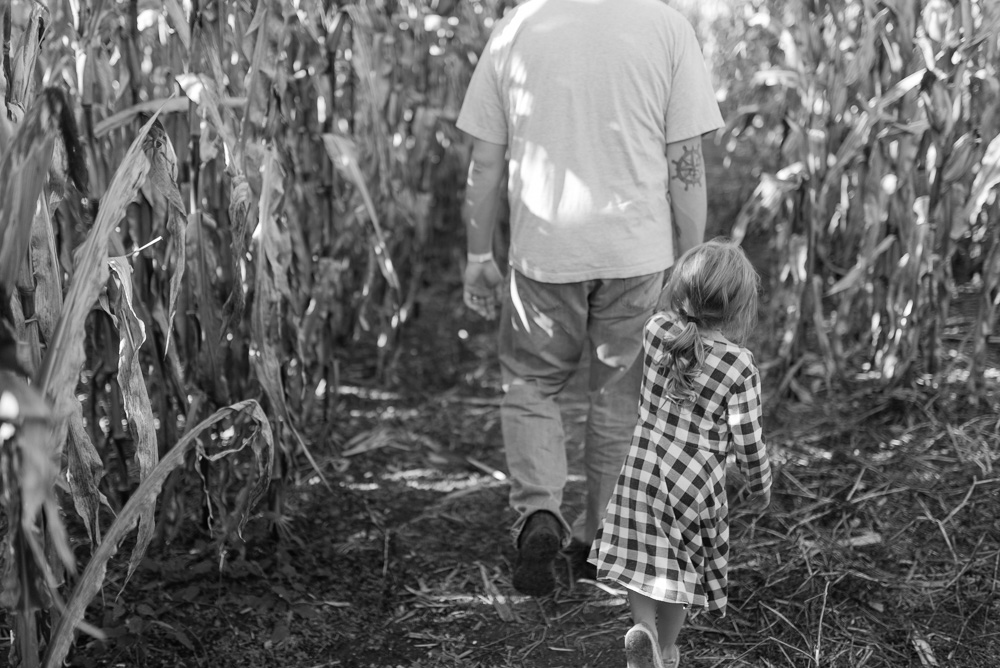 buttonwoods farm corn maze 2015-48