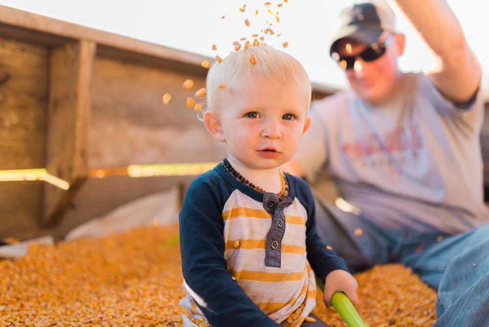 buttonwoods farm corn maze 2015-86