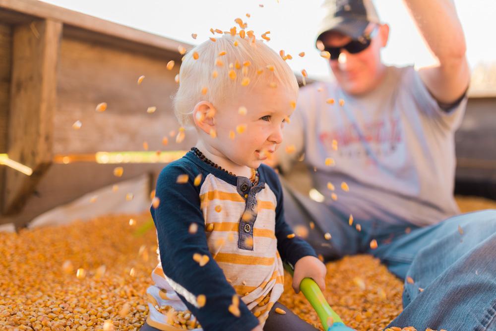 buttonwoods farm corn maze 2015-88