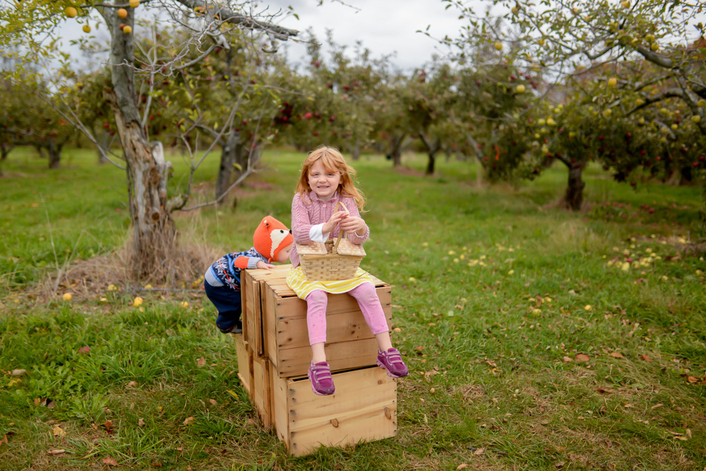 apple picking 2015-30