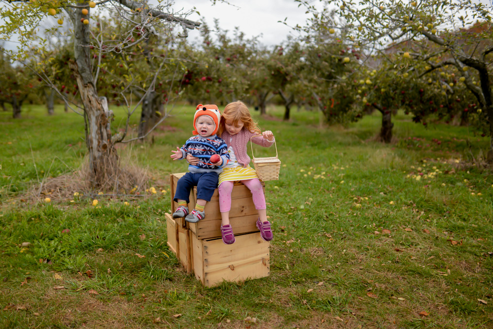 apple picking 2015-32