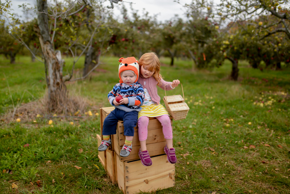 apple picking 2015-33