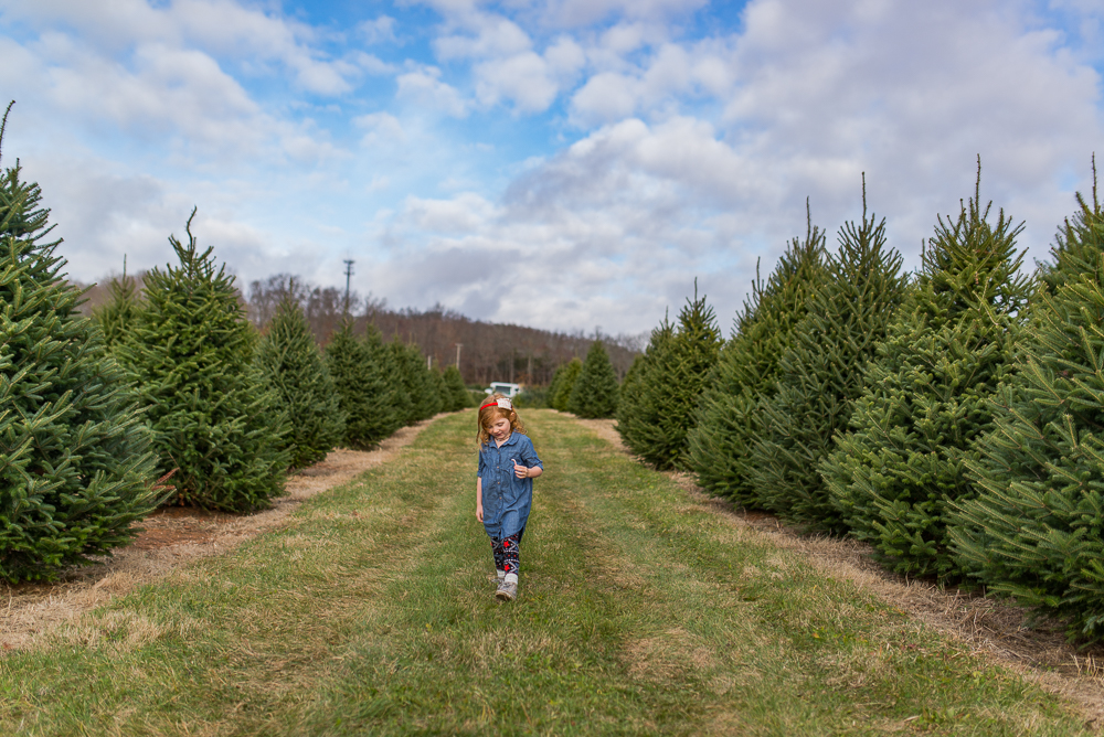 christmas tree-6