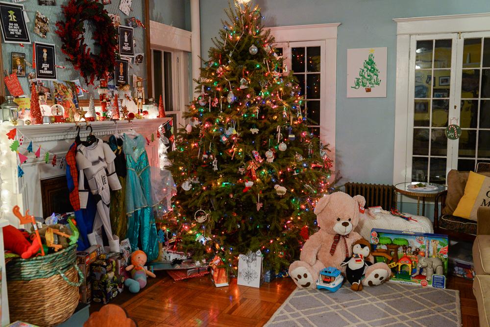 family christmas 2015-29
