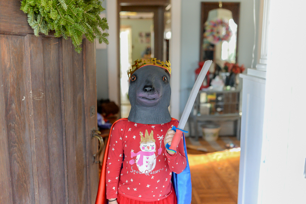 nutcracker birthday party pictures-137