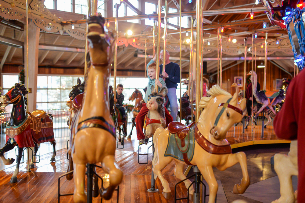 mansfield carousel web size-14
