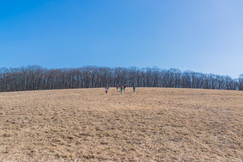 oak leaf dairy goat farm march 6th-47