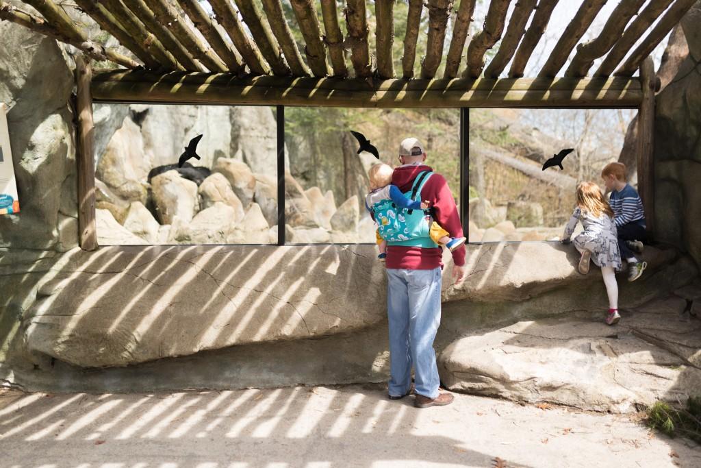 rwp zoo-23