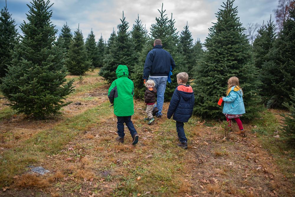christmas-tree-weekend-2016-3