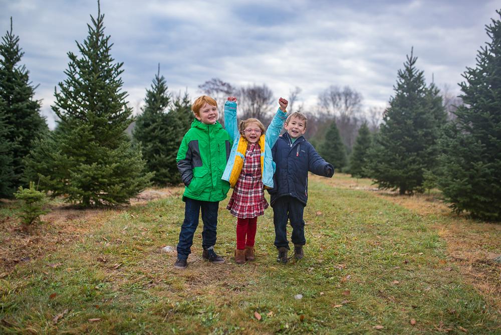 christmas-tree-weekend-2016-7