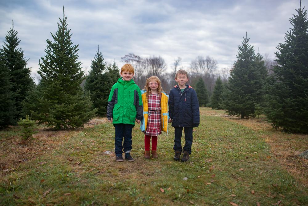 christmas-tree-weekend-2016-9