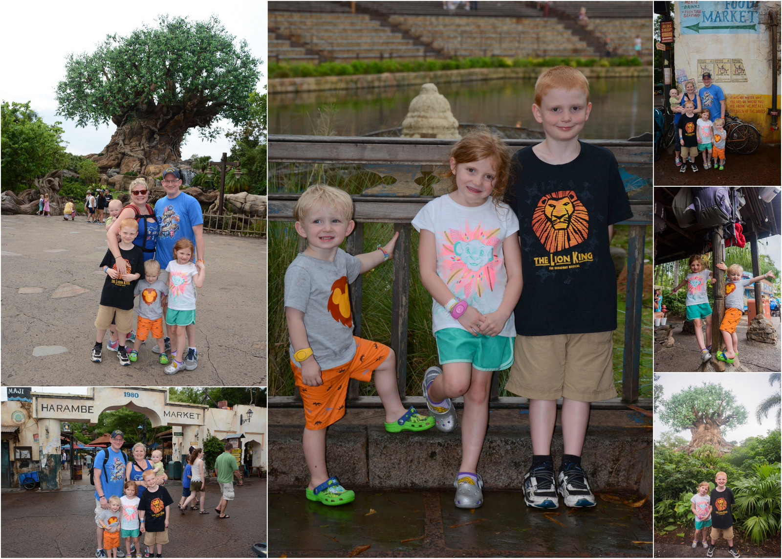 Family animal kingdom shirts