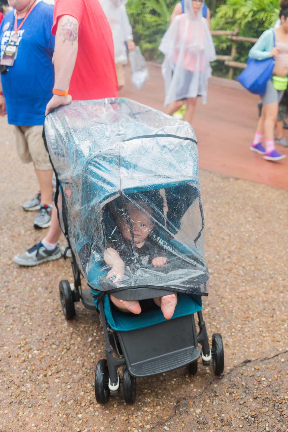 Rain cover for Disney World